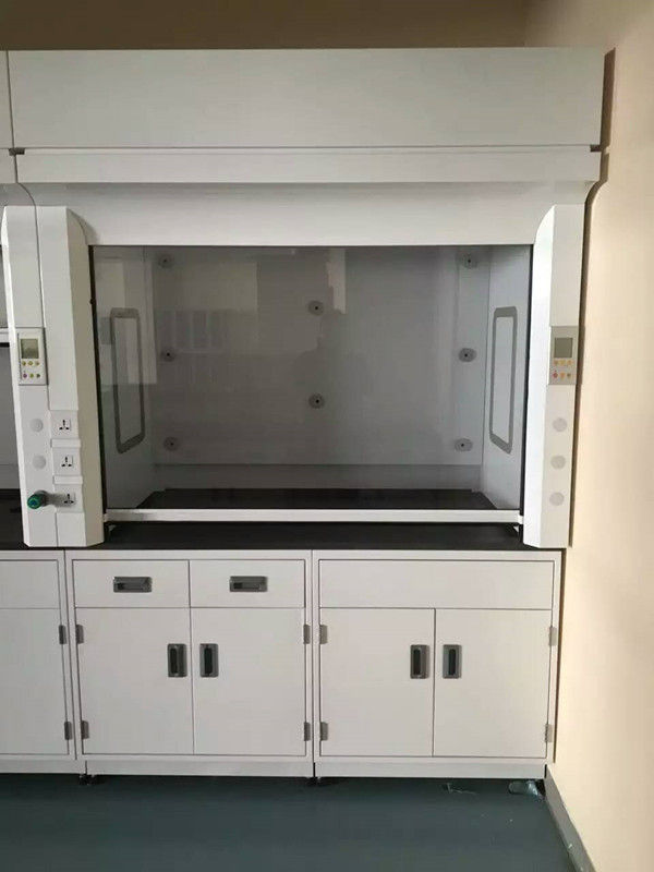 Laboratory PP Fume Hood with PVC Board Window 8 - 10mm Cabinet Door