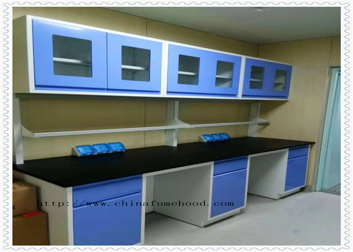 Floor Mounted Structure Chemistry Lab Cabinets And Countertops Anti Static